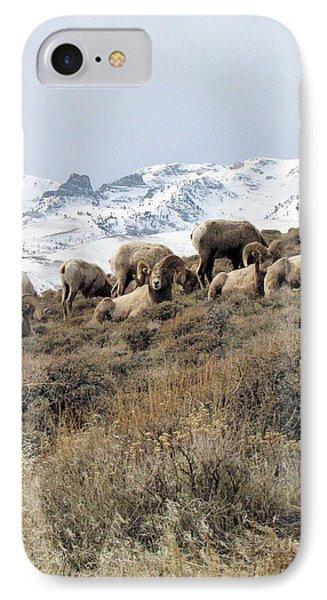 Chimney Rock Rams IPhone Case