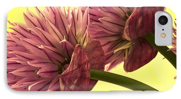 Chive Macro Beauty IPhone Case