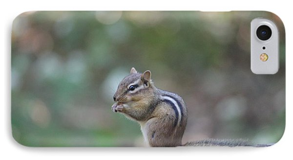 Chowing Chipmunk IPhone Case