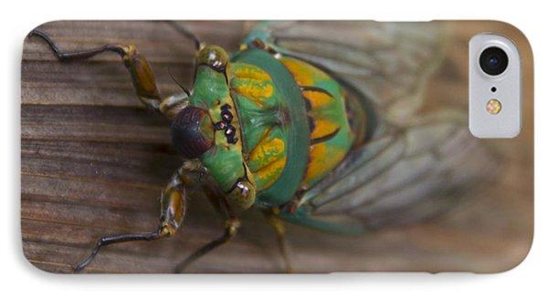 Green Whizzer Cicada IPhone Case