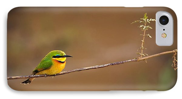 Cinnamon-chested Bee-eater IPhone Case