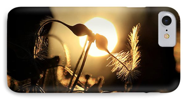 Clematis - Sunset IPhone Case