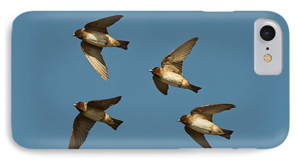 Cliff Swallows Flying IPhone Case