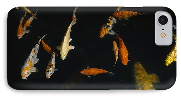 Close-up Of A School Of Fish In An IPhone Case