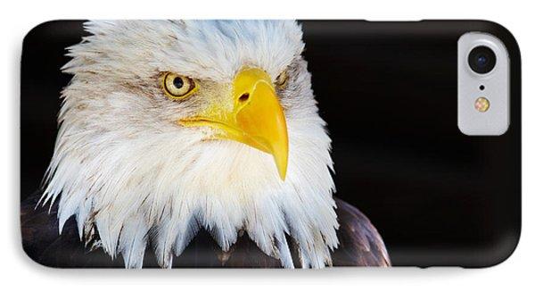 Closeup Portrait Of An American Bald Eagle IPhone Case