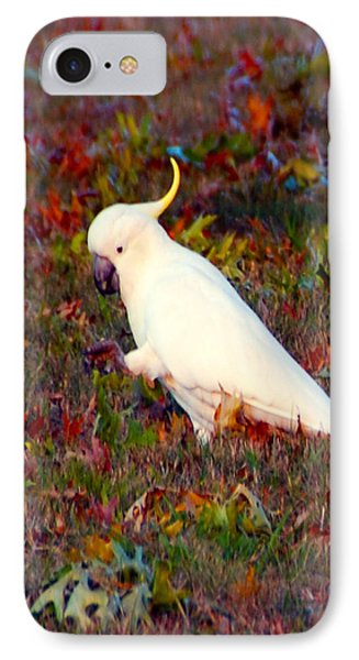 Cockatoo Color IPhone Case