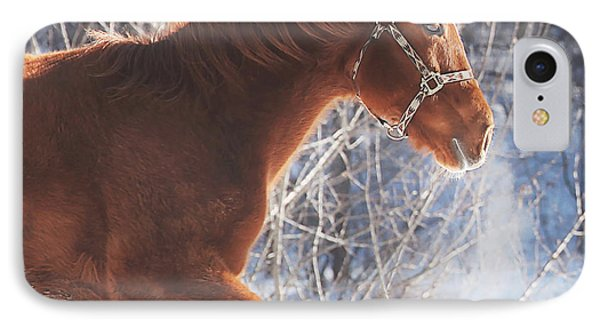 Horse iPhone 8 Case - Cold by Carrie Ann Grippo-Pike
