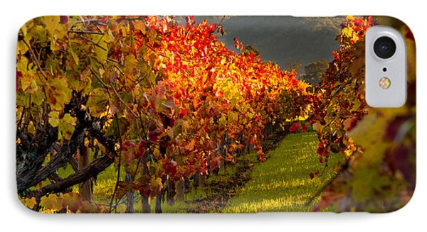 Color On The Vine IPhone Case