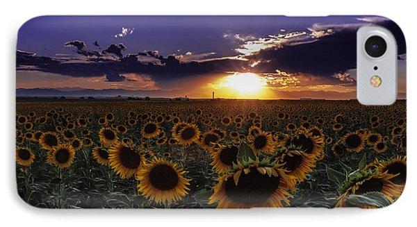 Colorado Sunflowers IPhone Case