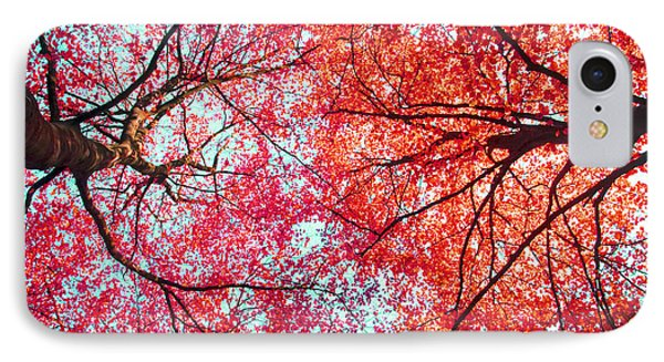 Abstract Red Blue Nature Photography IPhone Case