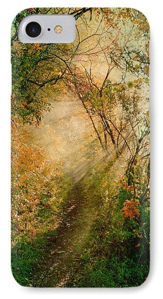Colorful Sunlit Path IPhone Case