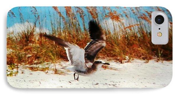 Windy Seagull Landing IPhone Case