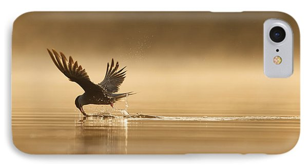 Common Tern Fishing Zuid-holland IPhone Case
