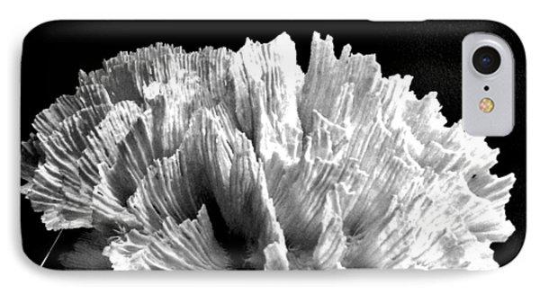 Corals 348 IPhone Case