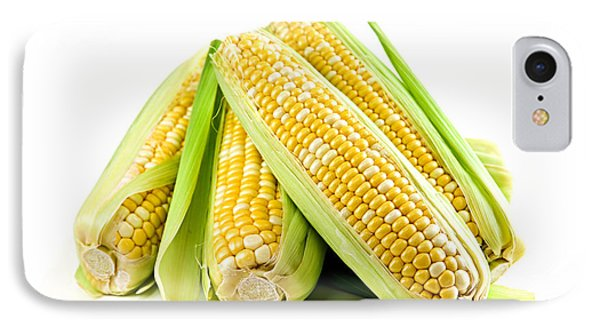 Corn Ears On White Background IPhone Case