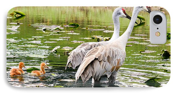 Crane Family Goes For A Swim IPhone Case