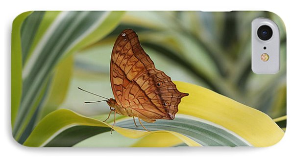 Cruiser Butterfly IPhone Case
