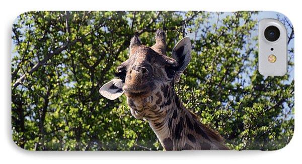 Curious Giraffe IPhone Case