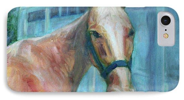 Custom Pet Portrait Painting - Original Artwork -  Horse - Dog - Cat - Bird IPhone Case