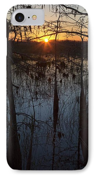 Cypress Swamp At Sunrise IPhone Case