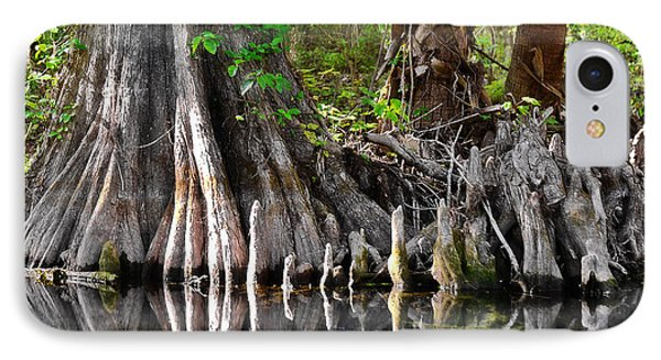 Cypress Trees - Nature's Relics IPhone Case