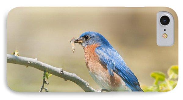 Daddy Bluebird IPhone Case