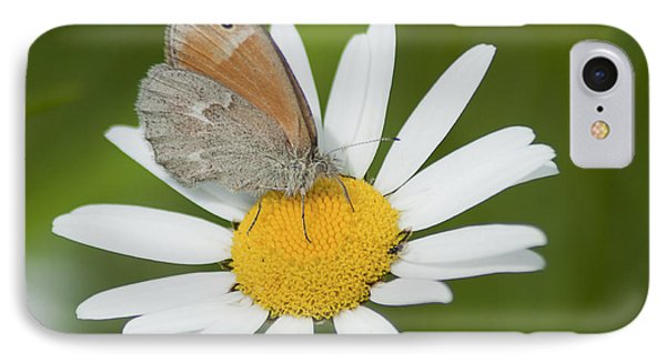Daisy's Visitor IPhone Case