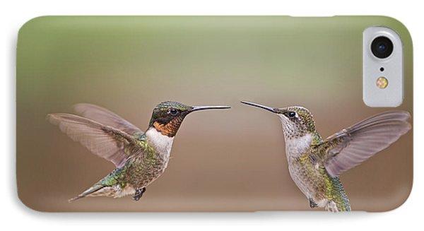 Dance Of The Hummingbirds IPhone Case