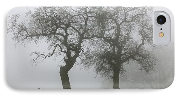 Dancing Oaks In Fog - Central California IPhone Case