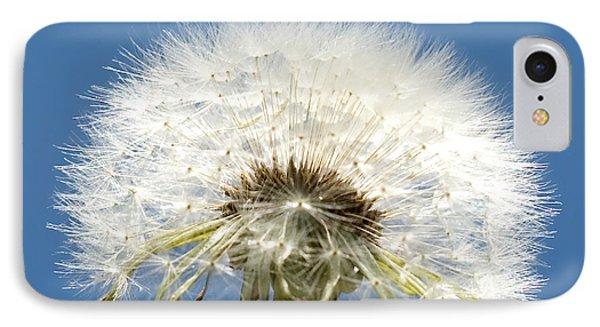 Dandelions Are Beautiful IPhone Case