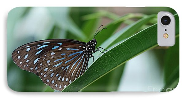 Dark Blue Tiger Butterfly #2 IPhone Case