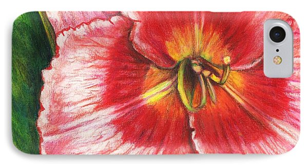 Daylily Delight IPhone Case