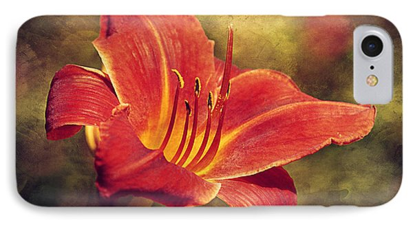 Daylily IPhone Case