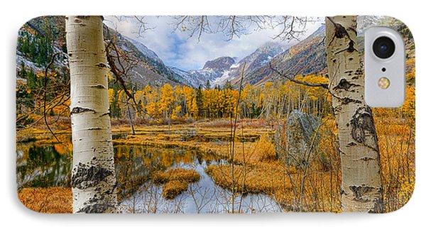 Dazzling Fall Foliage IPhone Case