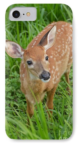 Deer 42 IPhone Case
