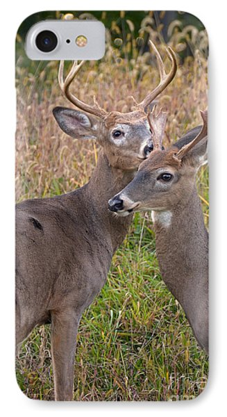 Deer 48 IPhone Case