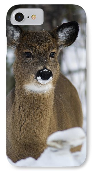 Deer Portrait IPhone Case