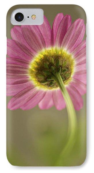 Delicate Daisy IPhone Case
