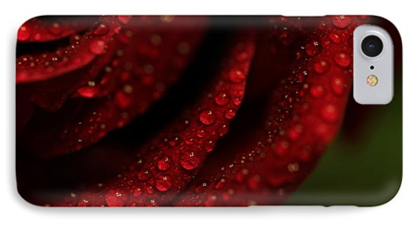 Dew Kissed Rose IPhone Case