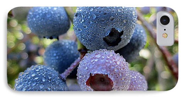 Dewy Blueberries IPhone Case