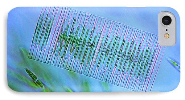 Diatoms And Green Algae IPhone Case