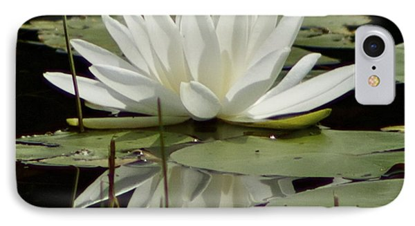 Dockside Lily IPhone Case