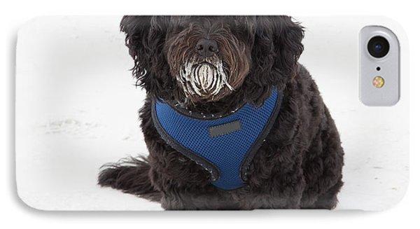 Doggone Good Beach Fun IPhone Case