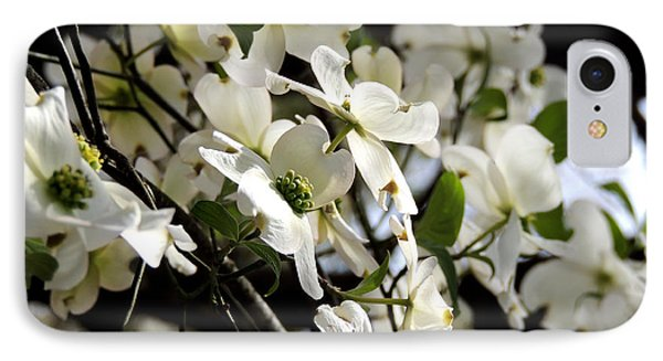 Dogwoods In The Spring IPhone Case
