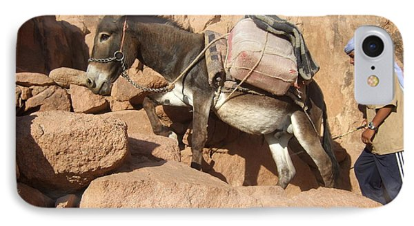 Donkey Of Mt. Sinai IPhone Case