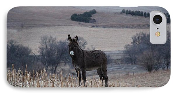 Donkey  IPhone Case