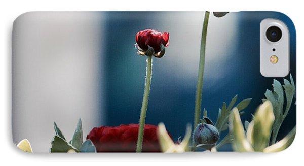 Don't Be Ranunculus IPhone Case