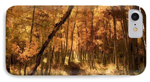 Down The Golden Path IPhone Case