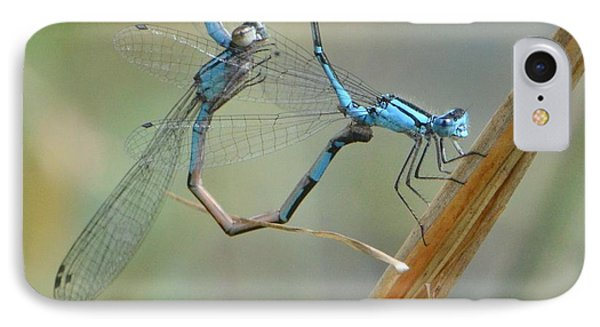 Dragonfly Courtship IPhone Case