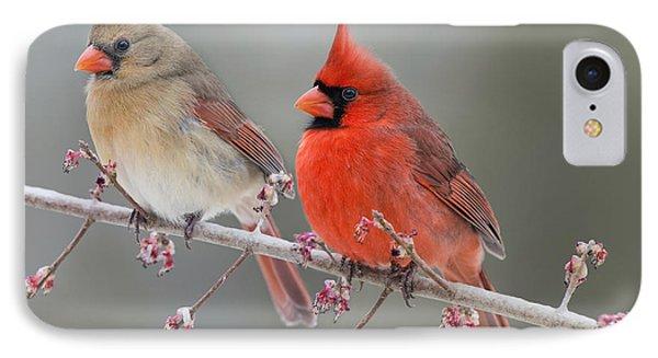 Dreamy Redbirds IPhone Case